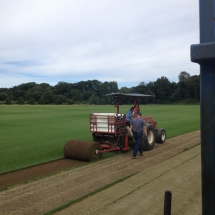 Harvesting Big Rolls of Turf